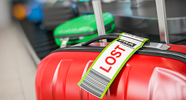 מזוודה אבדה טיסה סודות החופשה 2, צילום: שאטרסטוק