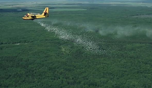 Elbit Systems Aerial Firefighting. Photo: Elbit