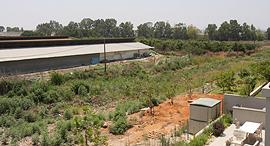 השטח ביד חנה שעליו אמור היה לקום המרכז הלוגיסטי של דיפלומט, צילום: נמרוד גליקמן