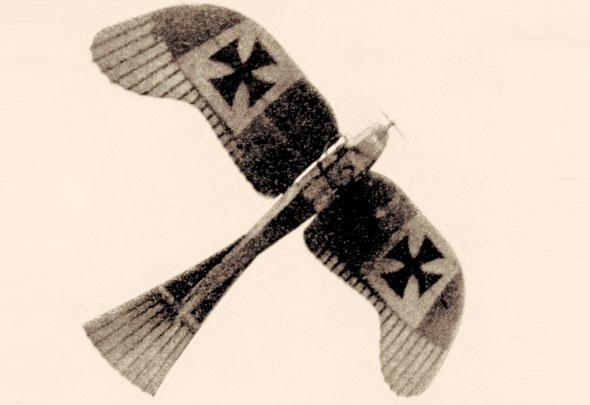 מטוס אטריך טאובה, ששימש את הכוחות האיטלקיים לסיור ותקיפה, צילום: Wikimedia