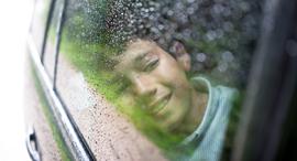 ביטוח רכב, צילום: שאטרסטוק
