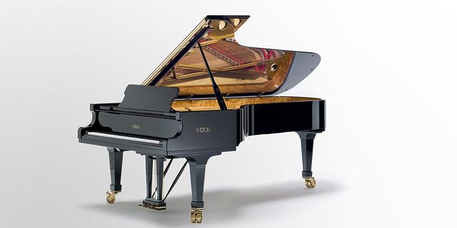 הפסנתר של פזיולי, צילום:  Fazioli