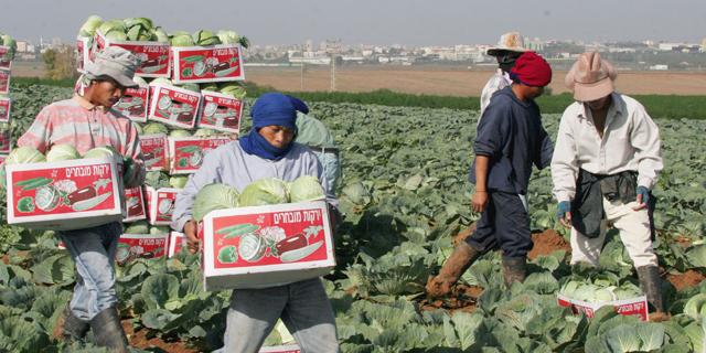 נאסרה כניסתם של עובדים זרים מתאילנד לישראל