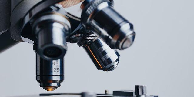 קניין רוחני(IP)- נדבך מרכזי בגיוס הון ובבניית ערך של סטארטאפ בתחום המכשור הרפואי