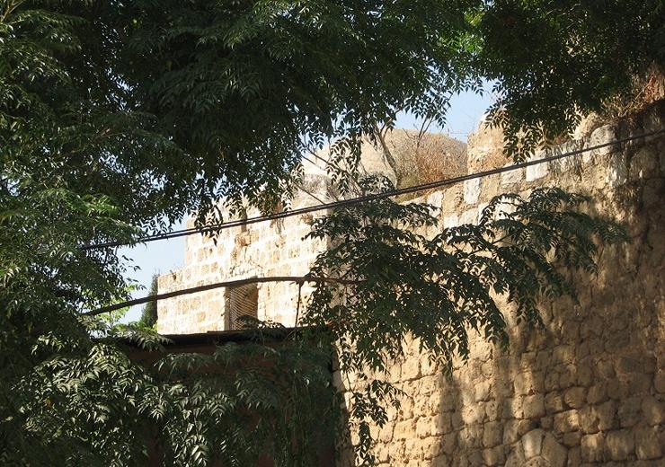 """מבט נוסף על קבר סלמה אבו האשם, צילום: ארגון """"זוכרות"""""""