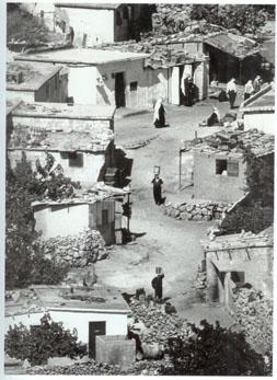 החיים בכפר סלמה, צילום: