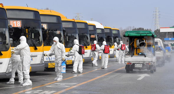 ריסוס אוטובוסים בדרום קוריאה
