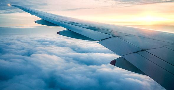 """רועי חיון: """"צפויים פיטורים המוניים באל-על וחברות תעופה ישראליות נוספות"""""""