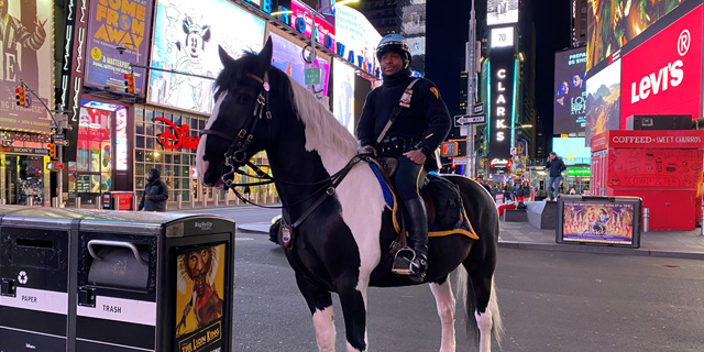 שוטר בטיימס סקוור, ניו יורק, צילום: רויטרס
