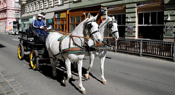 כרכרה מובילה משלוחי מזון בווינה, בשבוע שעבר. אירועים המוניים, רק מסוף יוני, צילום: רויטרס
