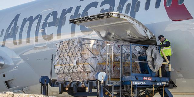 עד שיחזרו הנוסעים, חברות התעופה מסתערות על המטען