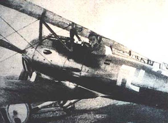 בקהרדט במטוסו, עליו צלב הקרס, צילום: Wikimedia