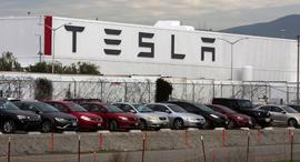 מפעל של טסלה בפרימונט, קליפורניה. שם יוצרו המכוניות, צילום: רויטרס
