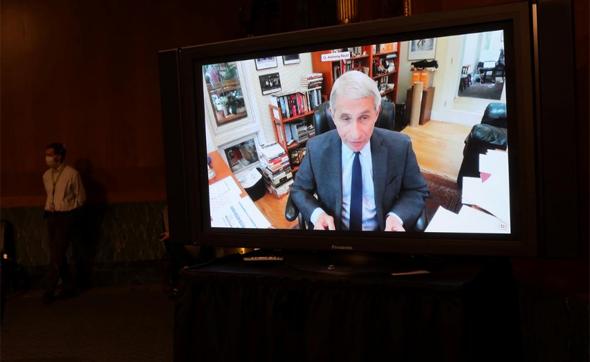 """ד""""ר פאוצ'י בעדות המקוונת בפני הסנאט"""
