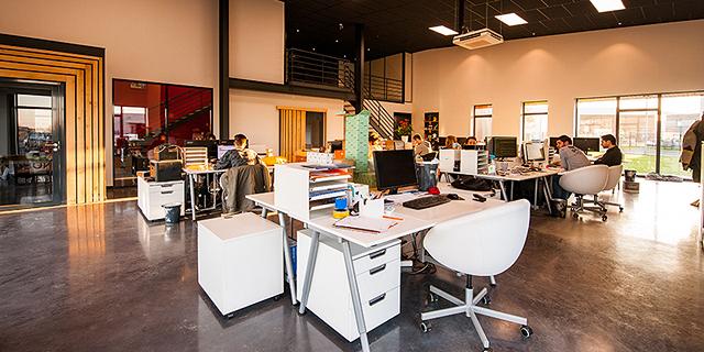 משרדים זירת הנדלן, צילום: Cadeau Maestro/Pexels