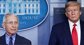 דונלד טראמפ ואנתוני פאוצ'י, צילום: רויטרס