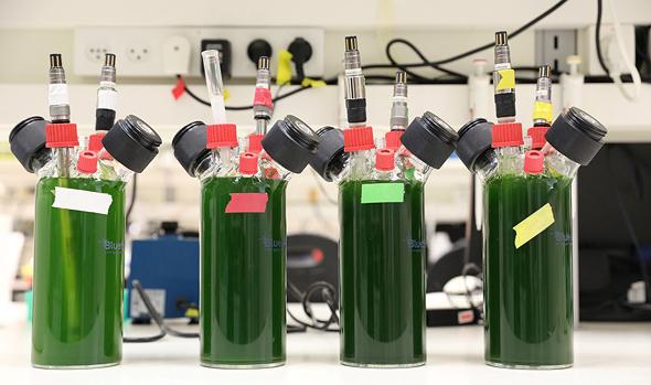 """המעבדה לאנרגיה מתחדשת באוניברסיטת ת""""א. התהליך יהיה כלכלי רק בעוד 10-15 שנה"""