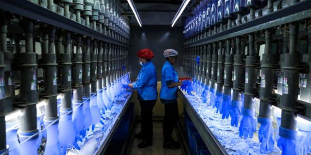 מפעל של טופ גלאב, צילום: גטי