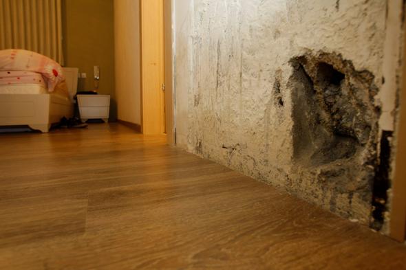 """רטיבות בבניין של גינדי החזקות בפ""""ת. במרבית התביעות נטען לעבודה רשלנית, צילום: נמרוד גליקמן"""