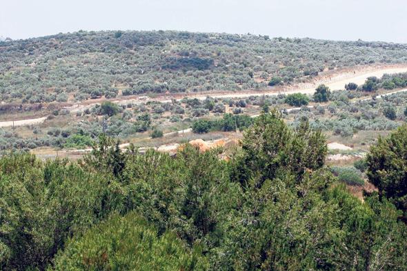 עמק חפר. נתניה דורשת ממנה 570 דונם לצורך בניית שכונת מגורים