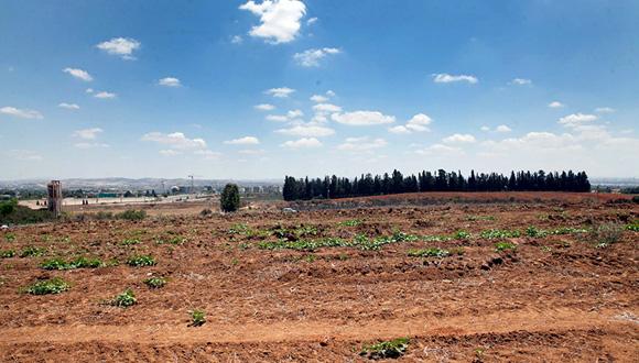 קרקע חקלאית, צילום: אוראל כהן