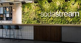 משרדי סודהסטרים , צילום: שירן כרמל