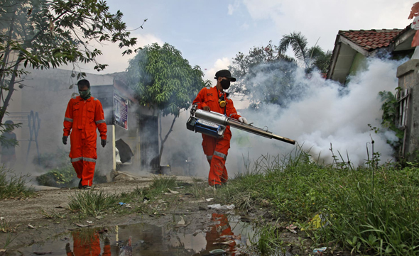 ריסוס נגד יתושים באינדונזיה