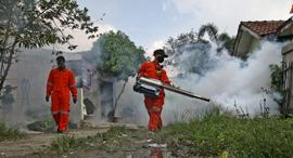 ריסוס נגד יתושים באינדונזיה, צילום: גטי אימג'ס