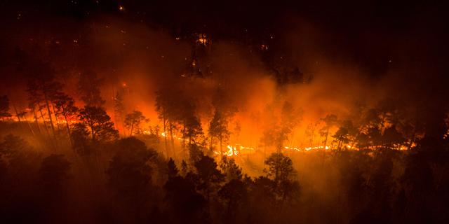 סיביר בוערת: הצבא הרוסי שיגר מטוסים לכיבוי שריפות הענק בצפון המדינה