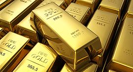 מוסף השקעות זהב, צילום: שאטרסטוק (Oleksiy Mark)