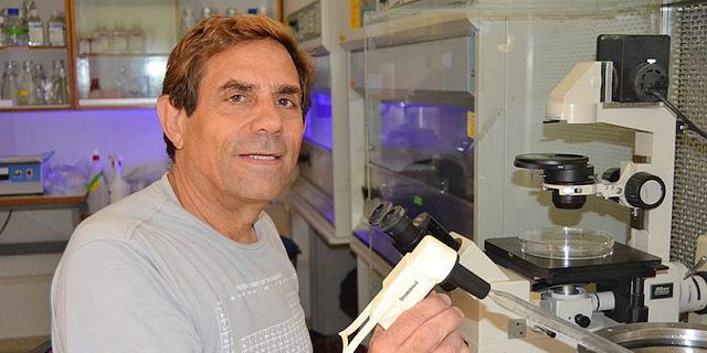 הסוף לסוכרת? בטאלין הישראלית תחל בניסויים קליניים בבני אדם