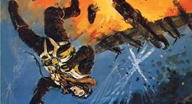 האיש שנפל מן השמיים, צילום: anfrix