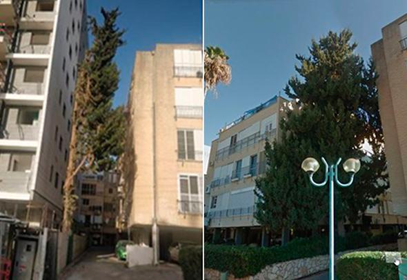 הפרויקט בשרון עם עץ הברוש בצדו, לפני הריסת הבניין הישן ואחריה , צילום: גוגל סטריט ויו
