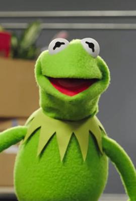הצפרדע קרמיט, צילום: disney+