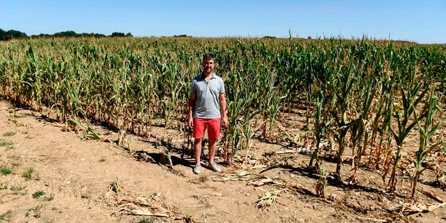 מחקר: גל הבצורת באירופה - הקיצוני ב-2,000 השנים האחרונות