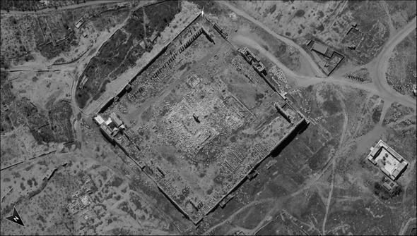 אתר תדמור, סוריה , מקור: משרד הביטחון