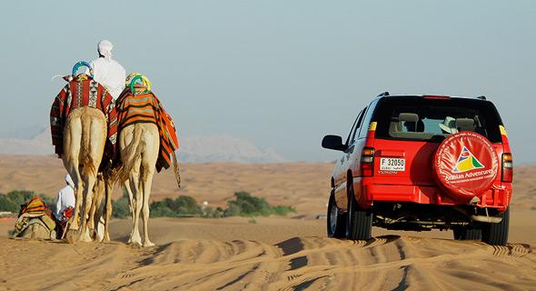 שמורת טבע במדבריות דובאי, צילום: איי פי