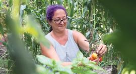 בילי הראל בגינת הירק שלה בחצר הבית, צילום: אלעד גרשגורן