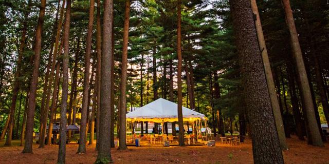 עבודה באווירת קמפינג - ברידג'ווטר העבירה משרדיה לאוהלים ביער