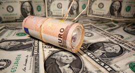 דולר יורו מטבעות שטרות כסף, צילום: רויטרס