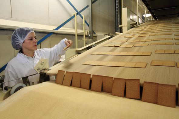 מפעל אסם, צילום: ערן יופי כהן