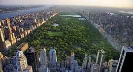 סנטרל פארק מנהטן ניו יורק 1, צילום: שאטרסטוק