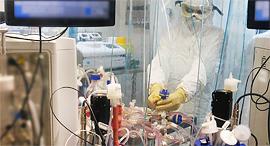 מעבדה במכון הביולוגי, צילום: משרד הביטחון והמכון למחקר ביולוגי