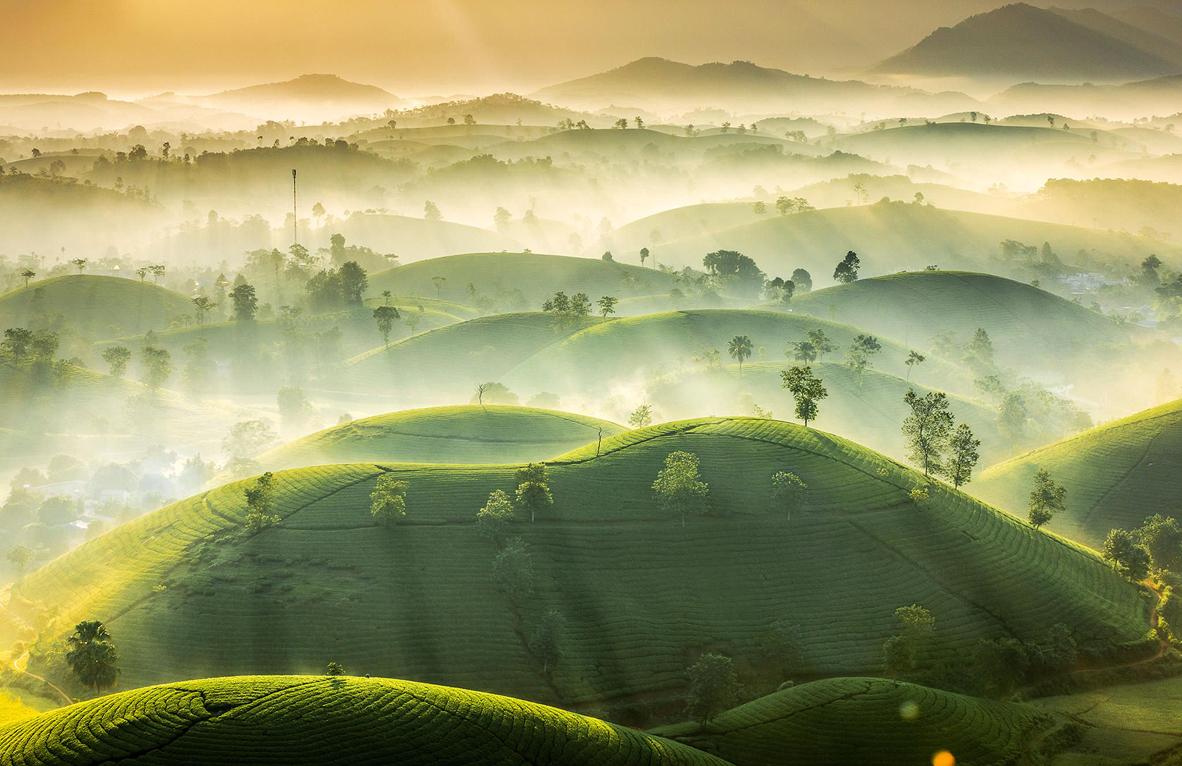 צילום: Vu Trung Huan