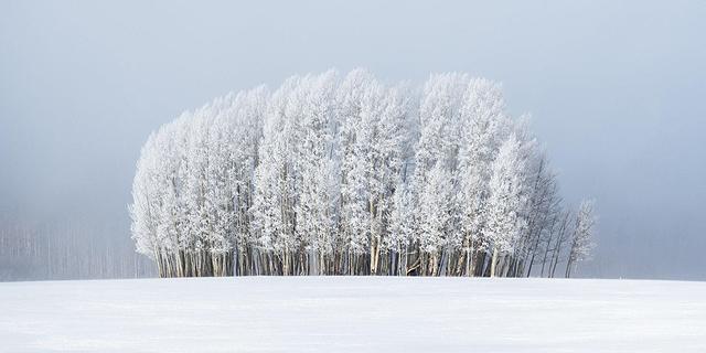 קר שם בחוץ? תמונות מזג האוויר של השנה