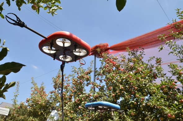 Tevel Aerobotics' fruit-picking drone. Photo: PR