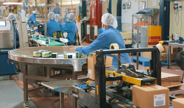 מפעל (ארכיון)