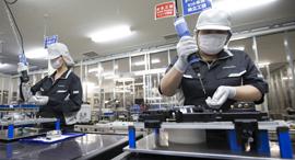 מפעל ייצור של פנסוניק ב טוצ'יגי יפן, צילום: בלומברג