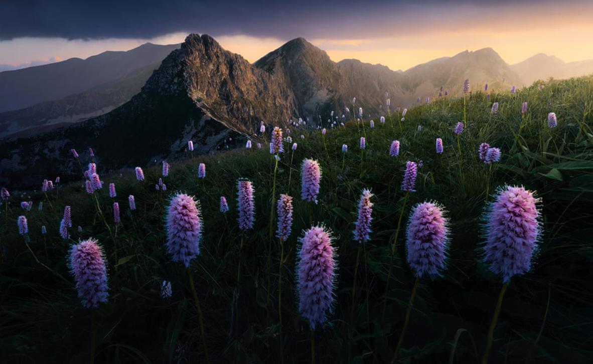 צילום: Filip Hrebenda/ European Environment Agency