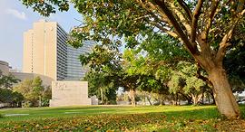 גן הכובשים תל אביב ריאה ירוקה פנאי, צילום: מטה המאבק להצלת גן הכובשים